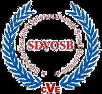 veteran1 copy